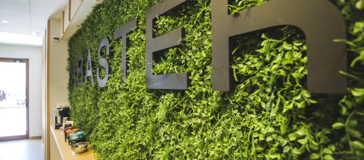 Entrada jardin Hotel Ábaster Soria